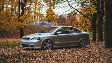 Photo of Opel Astra G coupe Bertone 2.0 Turbo by Adam
